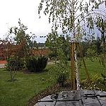 Kořenové závlahy